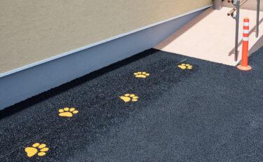 黄色い足跡